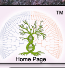 Return to Timeless Genealogies Home Page!